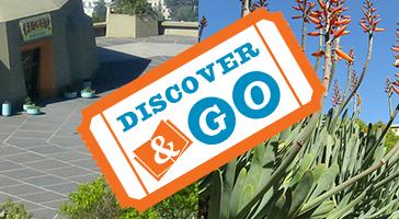 Discover and Go Logo
