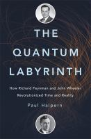 The Quantum Labyrinth book cover