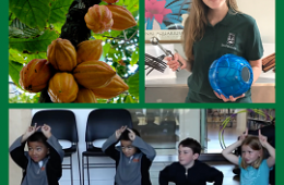 photos of cacao plant (top left), woman holding homemade ice cream maker (top right), and kids sitting (bottom)