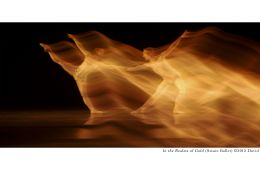In the realms of gold. Photo by David Jouris, 2012. Gold blurred dancer across dark stage.
