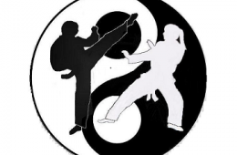 Yin-Yang symbol inscribed with two people exercising.
