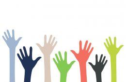 hands reaching up to volunteer