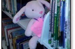 stuffed bunny sitting on a shelf of books