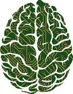 Circuitboard Brain