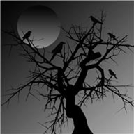 dead tree with crows at nightime