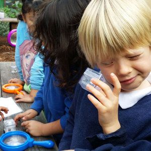 a boy looking through a magnifying glass at a bee