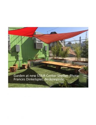 pocket garden, new STAIR Center Shelter
