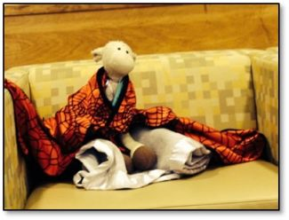Stuffed animal wrapped in a blanket enjoying a story at the West Branch