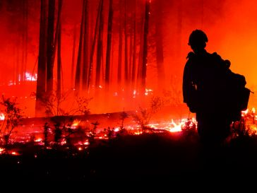 Firefighter standing in front of forest fire