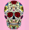 Colorful sugar skull drawing on a pink background